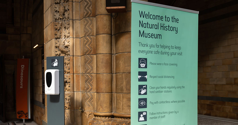 'You thought it would stop at statues?' Darwin exhibits at UK's Natural History Museum may be canceled for being 'offensive'