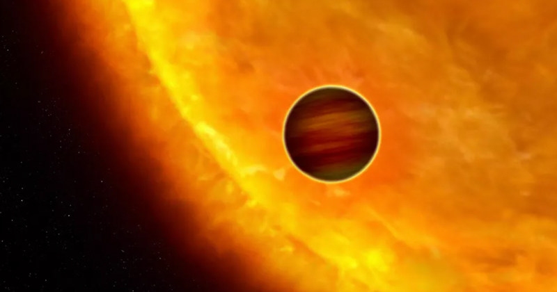 Study: Life Can Evolve, Thrive Within Stars