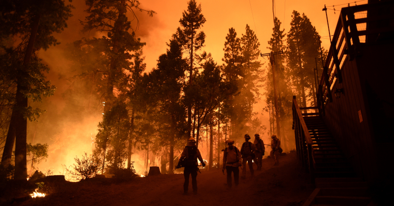 Democrat & MSM Terrorists Starting Fires Across U.S. To Blame Trump And Climate Change -- Watch Live!