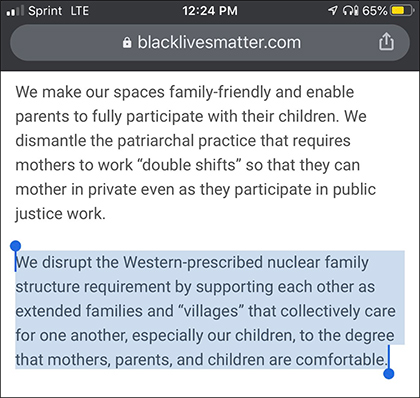 "Black Lives Matter Website Deletes Call to ""Disrupt"" Nuclear Family"