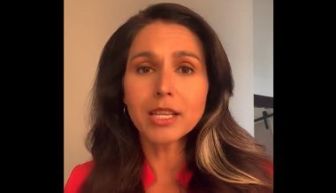 VIDEO: Tulsi Gabbard Slams Ballot Harvesting as 'Ripe for Fraud,' Introduces New Election Security Bill